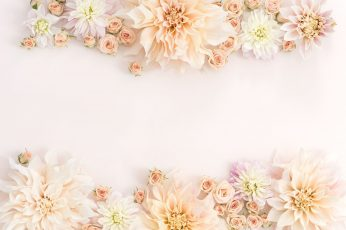 Rose gold wallpaper, flower, wedding, bouquet