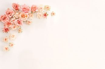 Rose gold wallpaper, flower, wedding, gift, romance