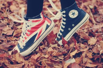 Blue-and-red Converse All-Star high-top sneakers wallpaper, fall