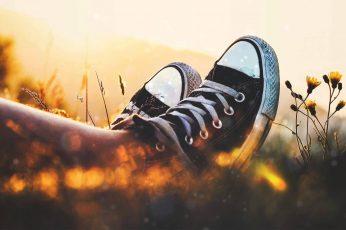 Black Converse All-Star wallpaper, selective focus, sunset
