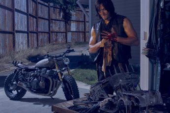Daryl Dixon from The Walking Dead poster wallpaper, bike, Norman Reedus