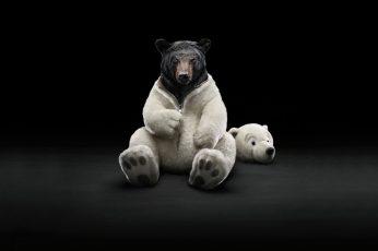 Grizzly bear wallpaper, black, bears, digital art, simple background