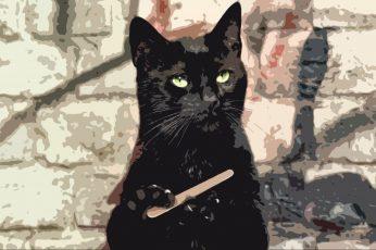 Black cat painting wallpaper, black cats, animals, humor, domestic animals