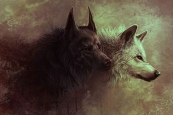 Painting of two black and white fox wallpaper, wolf, digital art, fantasy art