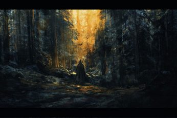 Fantasy wallpaper, concept art, artwork, wizard, art, forest, digital