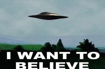 I want to believe wallpaper, Humor, Funny, UFO, tree, no people, flying