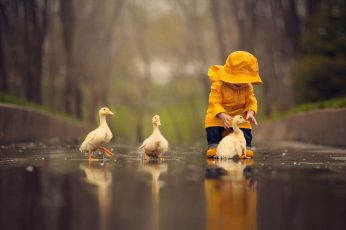 People wallpaper, childhood, rain, children, cubs, goose, play, funny