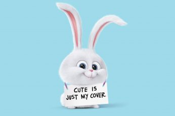 Secret Life of Pets rabbit character holding signage wallpaper, funny, light blue