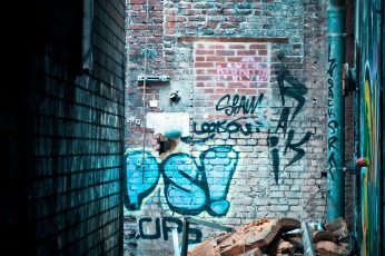 Abandoned wallpaper, art, brick wall, broken, dilapidated, dirty, ghetto