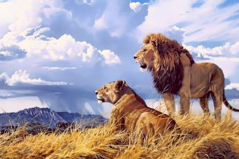 Lion and lioness wallpaper, animals, artwork, nature, big cats, clouds
