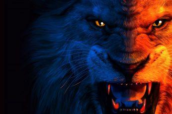Lion digital wallpaper, predator, art, grin, The King, jean pierre