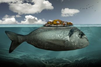 Gray fish illustration wallpaper, artwork, digital art, surreal, underwater