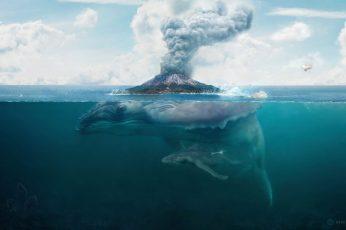 Blue whale illustration wallpaper, nature, water, digital art, artwork