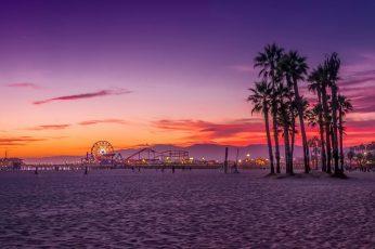 Palm trees digital wallpaper, beach, Los Angeles, sunset, sky