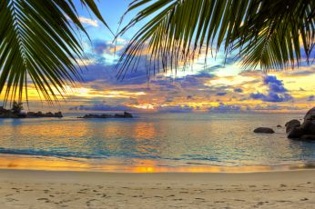 Body of water wallpaper, beach, tropics, sea, sand, palm trees, sky, land