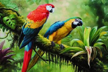 Bird wallpaper, parrot, jungle, brach, parrots, painting art, birds, tropical forest