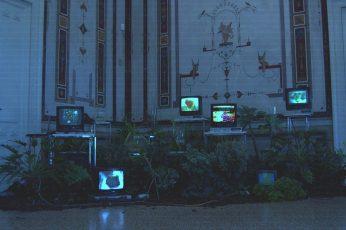 Vaporwave wallpaper, indoors, VHS, herbarium, distortion, TV