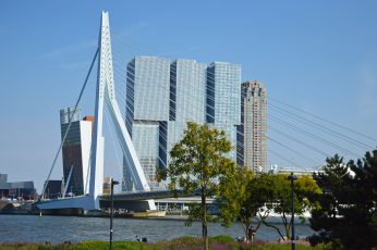 Rotterdam wallpaper, netherlands, nederland, holland, bridge, architecture