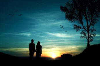 Romantic evening wallpaper, couples, trees, birds, sunset, silhouette