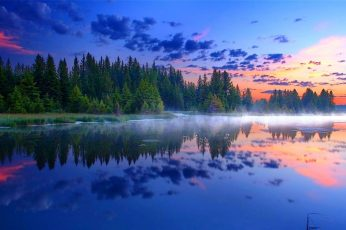 Body of water, morning, mist, Grand Teton National Park, forest