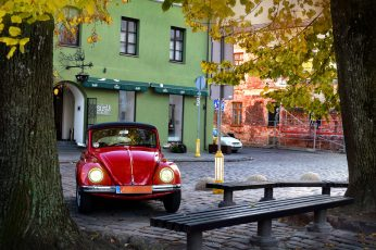 Red Volkswagen Beetle coupe parked beside gray tree trunk near black concrete bench at daytime wallpaper