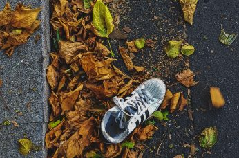 Apparel, clothing, footwear, plant, leaf, running shoe, ground