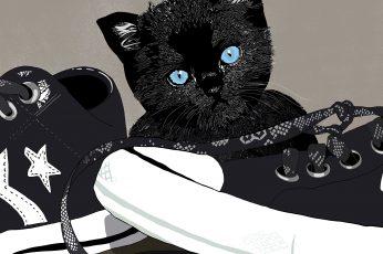 Kitten, sneakers, art, illustration, cute, cat, domestic cat