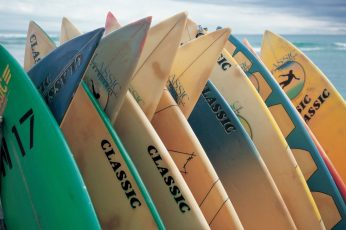 Assorted-color surfboard lot, surfing, sea, sport, extreme, number