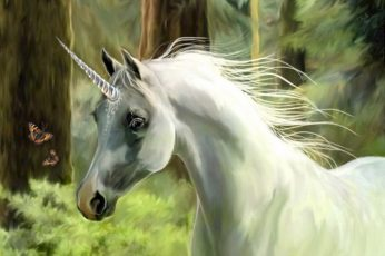 Animal wallpaper, horse, magical, unicorn