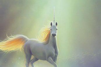 Fantasy, horse, pegasus, unicorn wallpaper