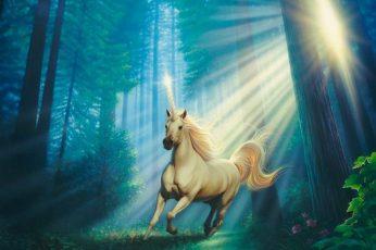 Beautiful, fantasy, flower, forest, sunlight, Unicorn, plant
