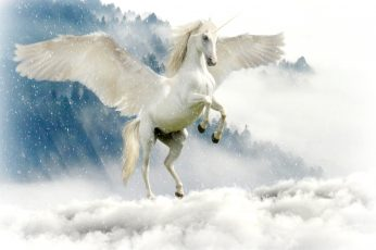Pegasus above of cloudy sky, unicorn, mythical creatures, fairy tales
