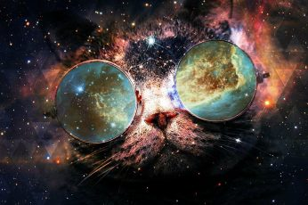 Cat wallpaper, space, stars, starry, fantasy, funny