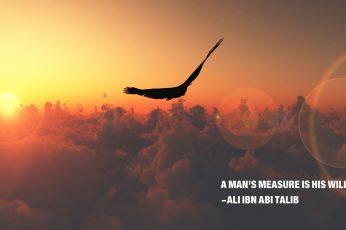 Black bird wallpaper, Ali ibn Abi Talib, Islam, Imam