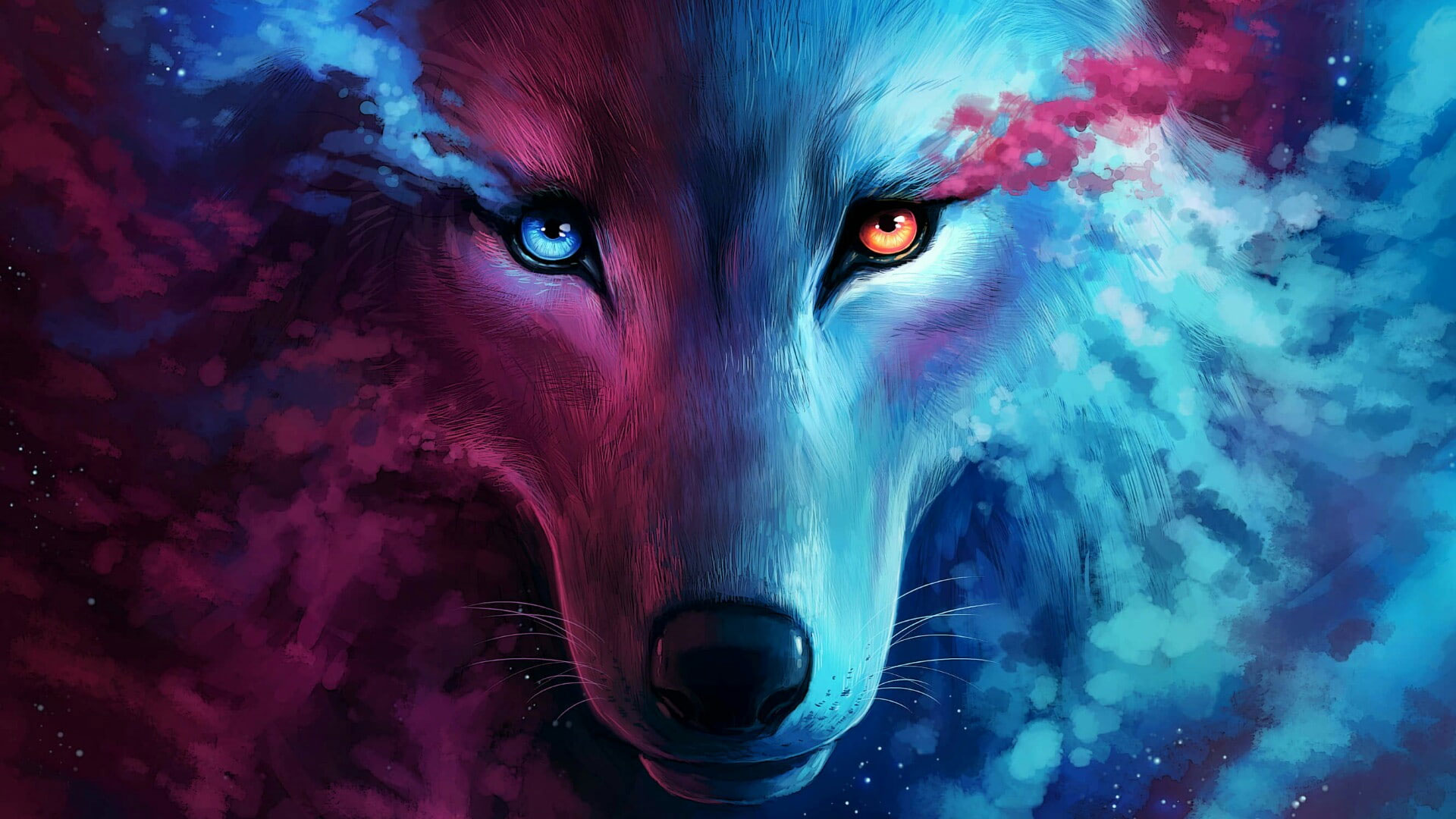 Animal Wallpaper