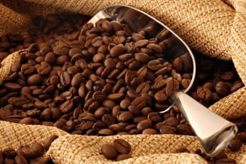 Coffee beans with gray metal scoop wallpaper, brown, texture, food and drink