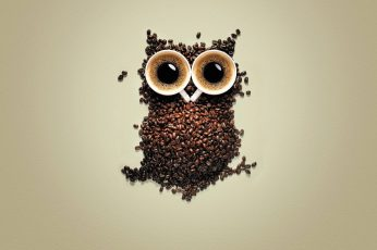 Coffee bean wallpaper, owl, coffee beans, creativity, birds, animals, simple background