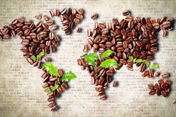 Coffee beans world map artwork wallpaper, leaves, food and drink, large group of objects