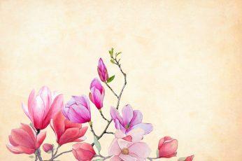 Pink flowers wallpaper, watercolor, floral