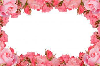 Pink floral frame wallpaper, roses frame, flower, romance, love, blooming