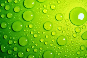 Water drops wallpaper, macro, green, wet, green color, close-up, backgrounds