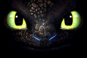 How to train your dragon Toothless digital wallpaper, animal themes