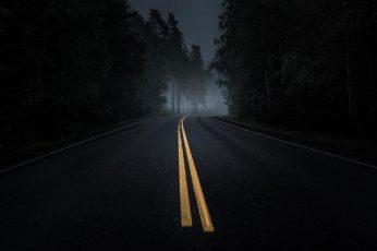 Road wallpaper, Mist, Dark, Asphalt, Night, Pine Trees, Forest