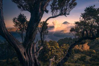 Morning wallpaper, asia, indonesia, bromo tengger semeru national park