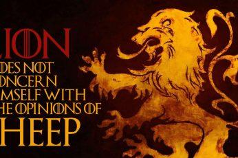 Lion and sheep metaphore wallpaper
