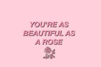 You're as beautiful as a rose Wallpapers