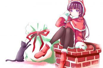 Wallpaper Animal, Cat, Christmas, Costume, Ears, Gokou