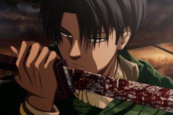 Wallpaper Anime, Attack On Titan, Blood, Levi Ackerman