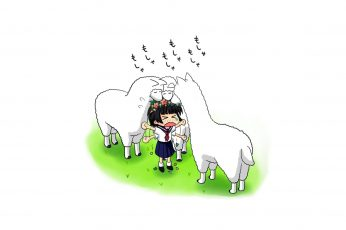 Wallpaper Anime, Toaru Majutsu No Index, Animal, Blush