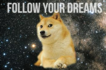 Wallpaper Doge With Text Overlay, Inspirational, Animals